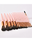Fashion Pink Sector Shape Decorated Makeup Bruch (15 Pcs )