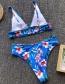 Fashion Blue Flower Print Split Swimsuit
